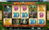 Spin Palace Casino Wild Orient